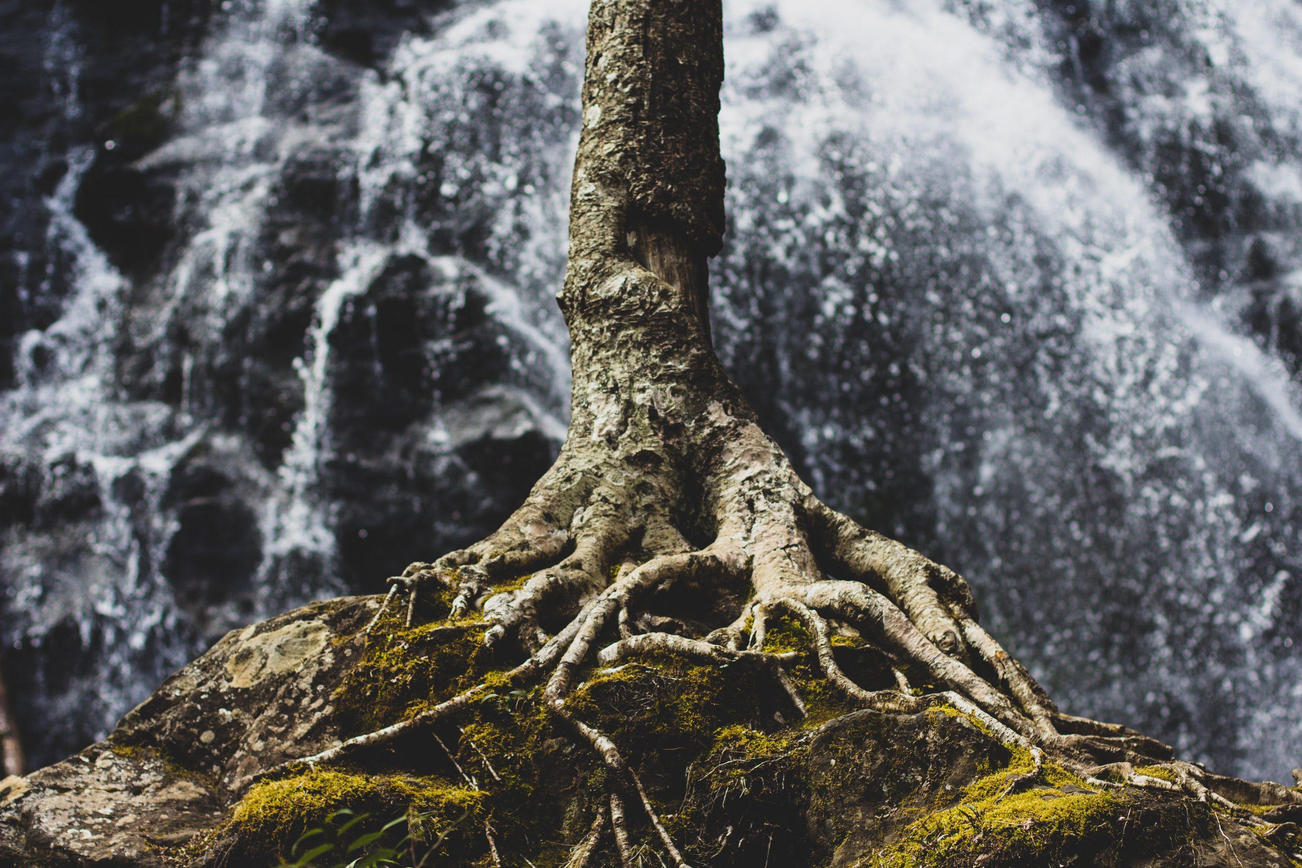 Pondasi Tegaknya Ibadah